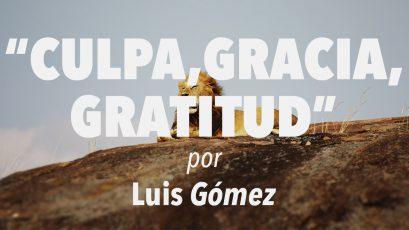 Culpa, gracia, gratitud