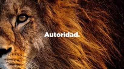 Serie: Diseño Original | Autoridad | Roberto González