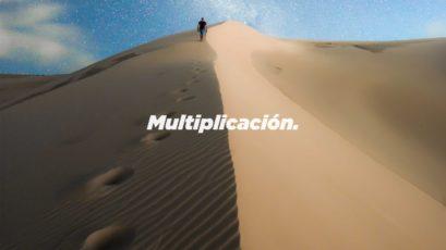 Serie: Diseño Original | Multiplicación | Roberto González